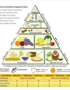 Food calorie chart template download also sample templates rh sampletemplates