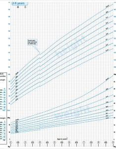 Boys growth chart template pdf also sample charts templates rh sampletemplates