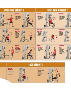 Weight lifting workout chart also sample documents in pdf rh sampletemplates