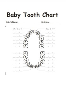 Baby Teeth Chart Alphabet Www Homeschoolingforfree Org