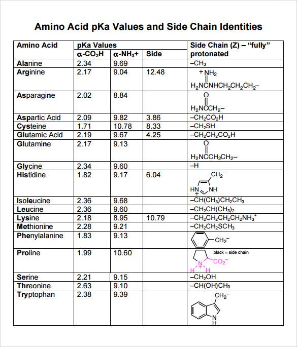 Amino Acids Pdf