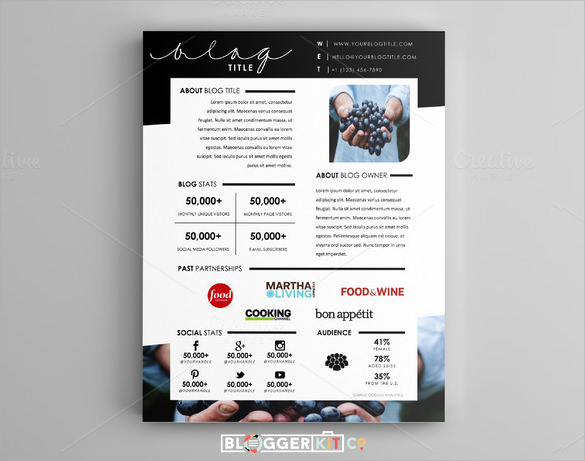 11 Press Kit Templates To Download Sample Templates
