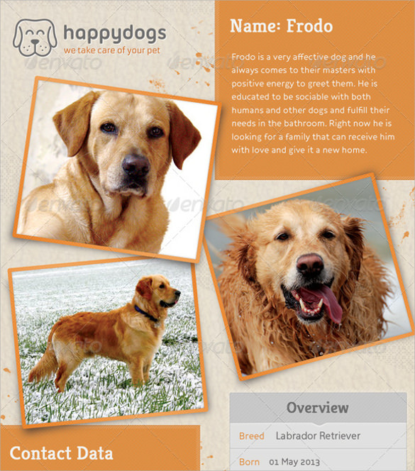 Lost Dog Flyer Template 7 Download Documents In Vector