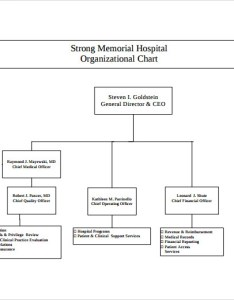 Hospital organizational chart sample also templates to download rh sampletemplates