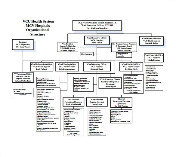 9 Hospital Organizational Chart Templates to Download
