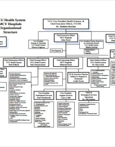 Hospital organizational chart free download also sample documents in pdf rh sampletemplates