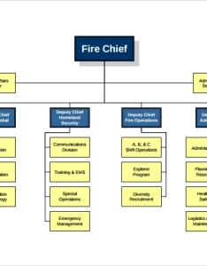 Fire department organizational chart example also sample charts templates rh sampletemplates