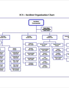 Printable ics organizational chart also sample templates rh sampletemplates