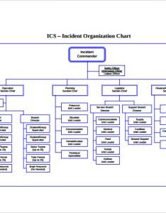 Printable ics organizational chart also sample documents in pdf rh sampletemplates