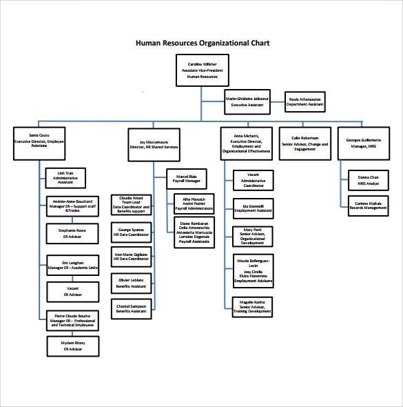 Human Resources Department Organizational Chart