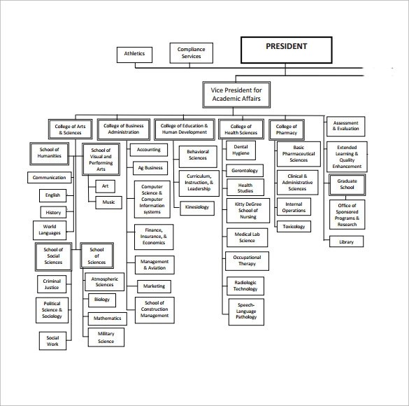 Basic Organization Chart- 17+ Download Free Documents in