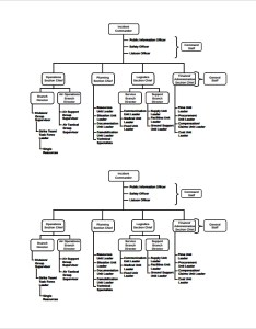 Business ics organization chart template also sample organizational documents in pdf rh sampletemplates