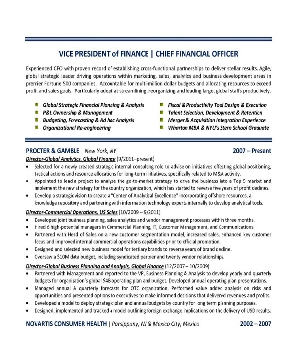 Sample Finance Resume Template  7 Free Documents Download in PDF Word