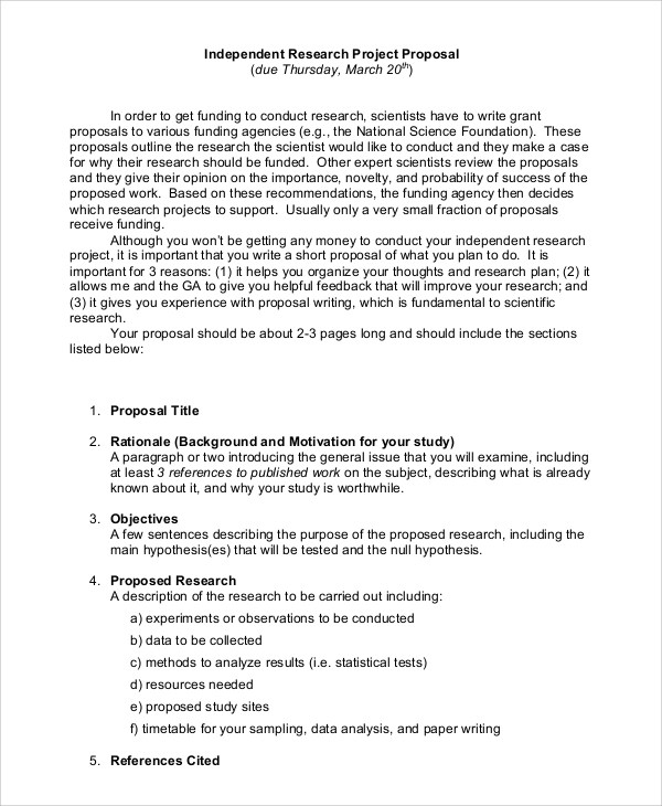 20 Sample Project Proposals  PDF Word Pages