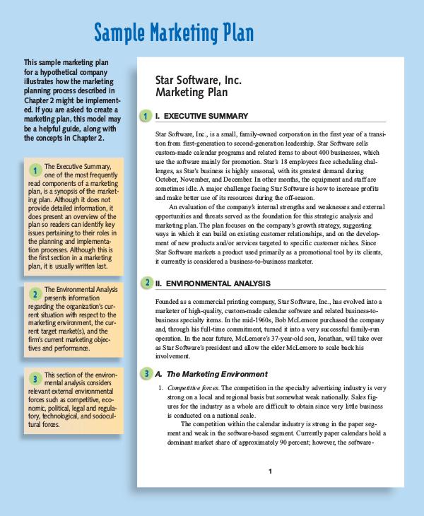 Sample Marketing Analysis Sample Marketing Plan Delighted Sample