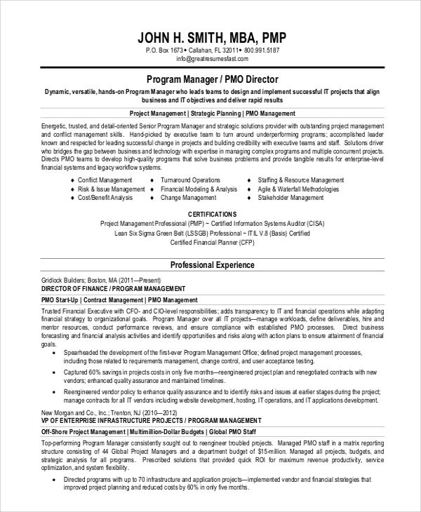 project manager resume summary statement examples