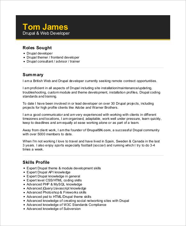 Sample Web Developer Resume  10 Examples in Word PDF