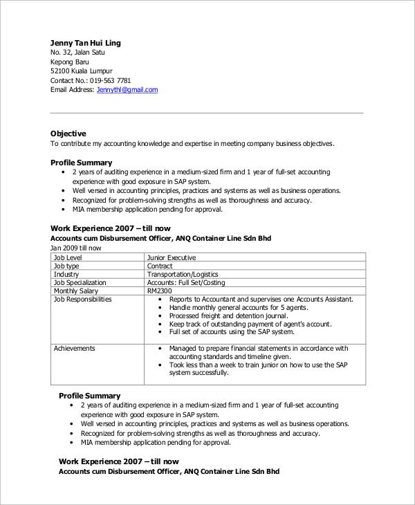executive resume examples pdf