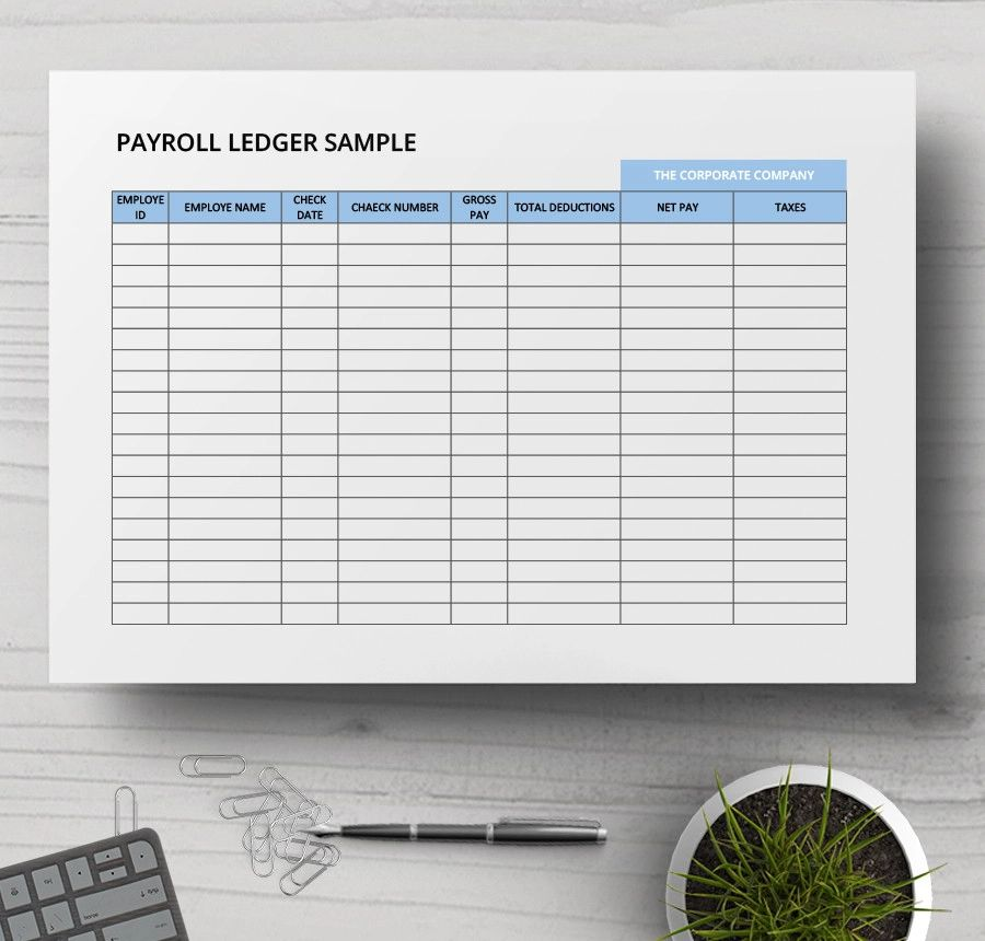 pay ledger template