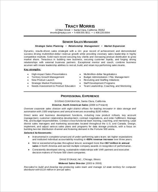 sales manager resume examples pdf