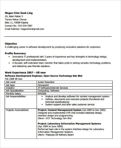 Sample Software Developer Resume 9 Examples In Word PDF