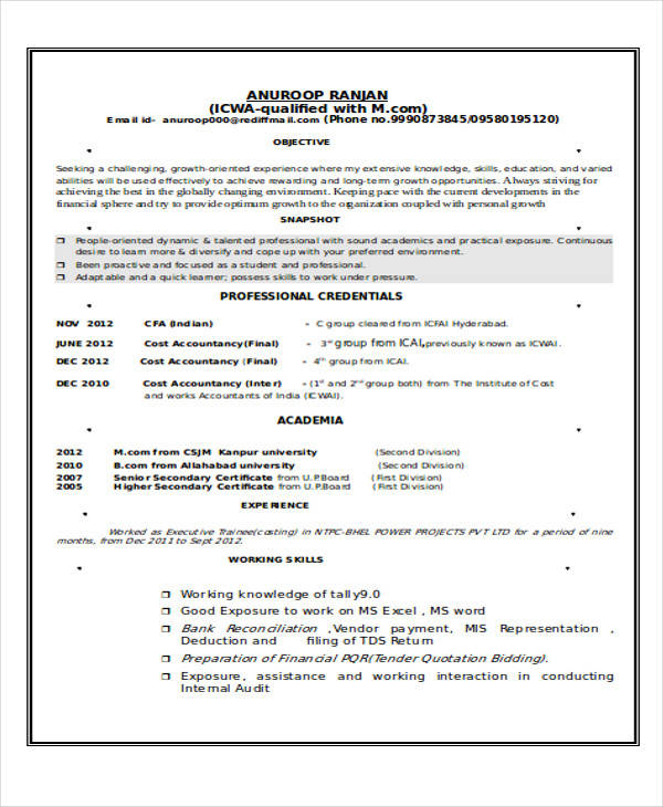 resume format accountant pdf