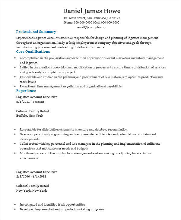 29 Executive Resume Designs Sample Templates