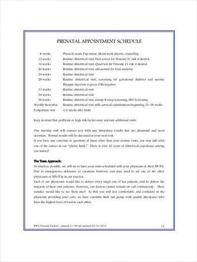 11 Appointment Schedule Samples And Templates PDF Word Excel