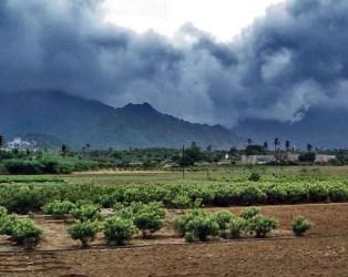 ચોમાસાની હજુ સત્તાવાર વિદાયની વાર, સમગ્ર ગુજરાતમાં આ તારીખોમાં વરસાદ પડવાનો યોગ