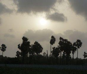 વાદળછાયા વાતાવરણ વચ્ચે ક્યારે આવશે વરસાદ? અંબાલાલ પટેલે આપી આ તારીખ
