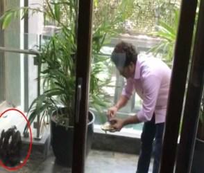 ક્રિકેટના ભગવાને આ રીતે બચાવ્યો અબોલનો જીવ, જુઓ video