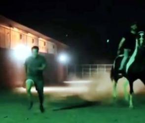 જ્યારે સલમાન ખાને લગાવી ઘોડા સાથે રેસ પછી થયું કંઇક આવું…, Viral Video