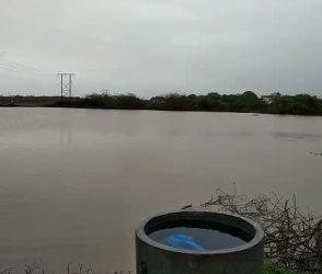જૂનાગઢમાં ભારે વરસાદને કારણે ખારા ડેમના 14 દરવાજા ખોલાયા, જુઓ video