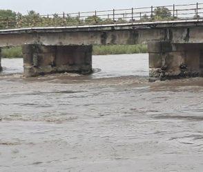 વલસાડ: ઔરંગા નદીએ વટાવી ભયજનક સપાટી, નીંચાણવાળા વિસ્તારમાં એલર્ટ