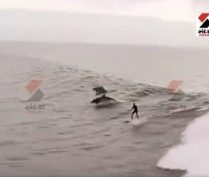 દરિયામાં લહેરો અને માછલીઓ સાથે સર્ફિંગ કરતા વ્યક્તિનો દિલધડક Video