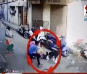 અમદાવાદમાં 2 વર્ષના માસૂમ બાળક પર શ્વાનનો જીવલેણ હુમલો, ઘટના CCTVમાં કેદ