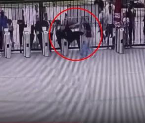 ચિંપાઝીએ મચાવ્યો ખેલ, એક કર્મચારી વચ્ચે આવ્યો તો લાત ભેગો ઉડાડી દીધો, જુઓ VIDEO