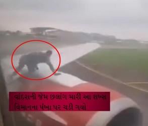 એક લખણ ખોટો માણસ ઠેકડો મારીને વિમાનના પંખા પર ચડી ગયો, VIDEOમાં જુઓ કેવા ગાંડા કાઢ્યાં