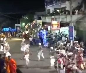 OMG! બુદ્ધની શોભાયાત્રામાં અચાનક હાથી ગાંડોતૂર બન્યો, લોકોને કચડી નાખ્યાં, જુઓ VIDEO