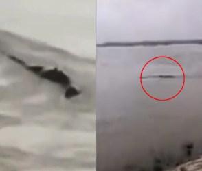 ચીનની નદીમાં જોવા મળ્યો 65 ફૂટનો રાક્ષસ! 60 લાખ ચીનીઓની રાડ ફાટી ગઈ, શોકિંગ વીડિયો!