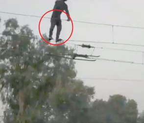 ખોફનાક Video: વીજળીના તાર પર ચઢી ગયો યુવક, અને પછી…