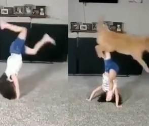 VIDEO: બાળકી અને કૂતરાના આ ખતરનાક સ્ટંટ જોઈને લાખો લોકો બોલ્યા- જીવનની 1 મિનિટ….