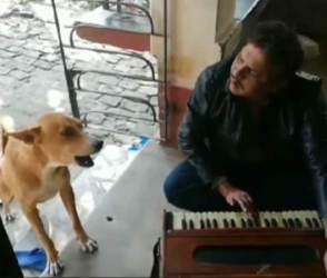 VIDEO: ફરીથી તેરી-મેરી ગીતની ધમાલ, આ વખતે ગાયકને જોઇ તમે આશ્વર્યમાં મુકાઇ જશો !