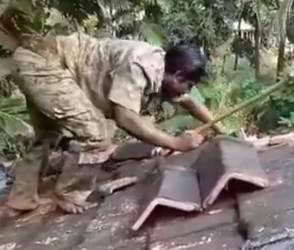 VIDEO: આને કહેવાય વટનો કટકો! કોબરા સાથે આ રીતે બિન્દાસ રમત રમવી બધાનું કામ નથી