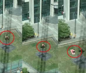 VIDEO: એક શખ્સ સરસ મજાનો તડકો ખાવા બગીચામાં બેઠો, પણ ક્રેનવાળાએ જબરો ખેલ કરી નાંખ્યો