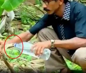 ગજબ થઈ ગયું! આ શખ્સે બોટલથી કોબરાને પાણી પીવડાવ્યું, VIDEO જોઈ લાખો લોકો ધ્રુજી ઉઠ્યાં