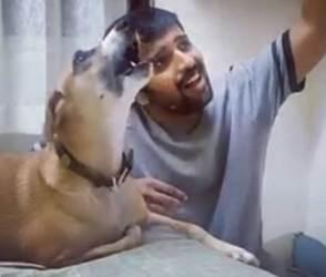 VIDEO: કૂતરાએ ભારી જમાવટ કરી, એવા એવા રાગ છેડ્યા કે સંગીતજ્ઞો પણ માંથુ ખંજવાળવા લાગ્યાં!