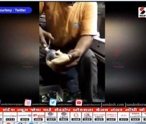 Video:વડાપાવને બદલે આ ગુજરાતીએ બનાવ્યું આઈસ્ક્રીમ પાવ, લોકોએ કહ્યું-ભગવાન માફ નહીં કરે..