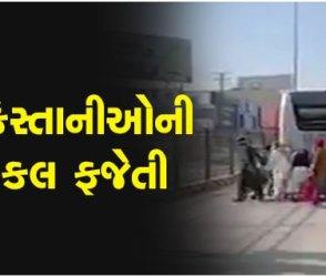 પાકિસ્તાનમાં કંઈક અજીબ થાય અને ભારતીયો મજા લેવાનું ભૂલતા હશે? જોઈ લો જોરદાર વીડિયો