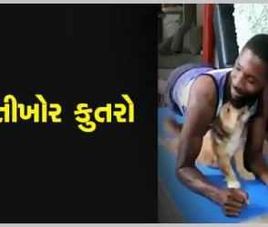 Viral Video: માલિકને કસરત ના કરવા દેવા મસ્તીખોર શ્વાને કરી આવી હરકત